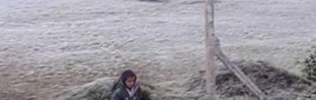 Sin jardines ni vacantes, Macri continúa el abandono a la infancia
